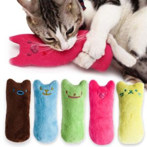 Funny Catnip Toys with Plush for Cats