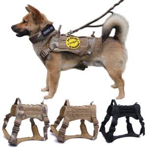 dog nylon harness and leash