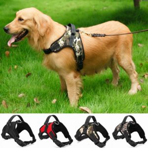 the best nylon casual harness for dogs for stopping pulling