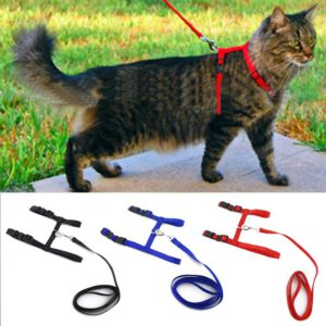 Cat Harness and Leash Adjustable for Walking