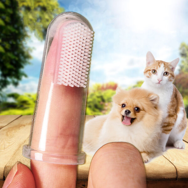 soft pet toothbrush with finger insertion