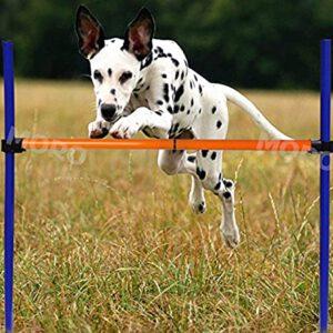 Pet Training Aids