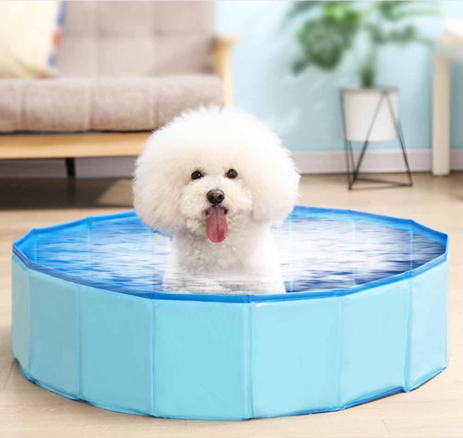 dog swimming pool, dog pools, pools for dogs