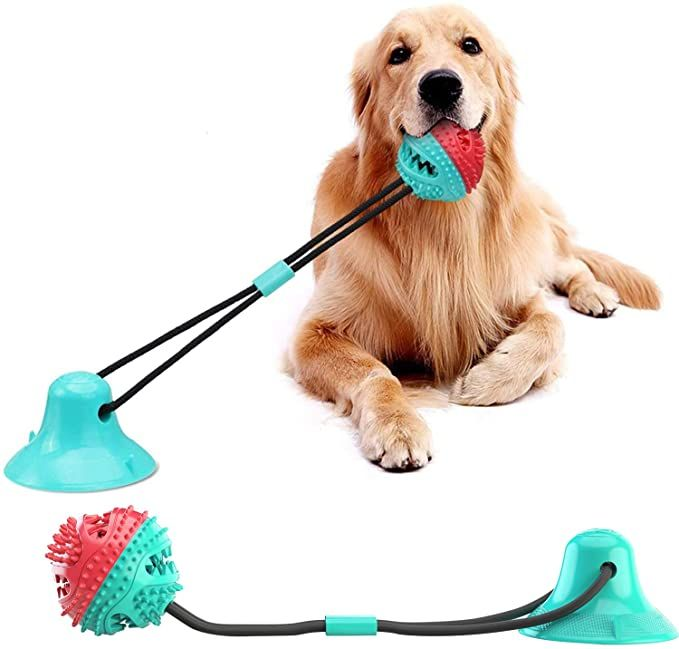 suction cup dog toys, suction cup toys